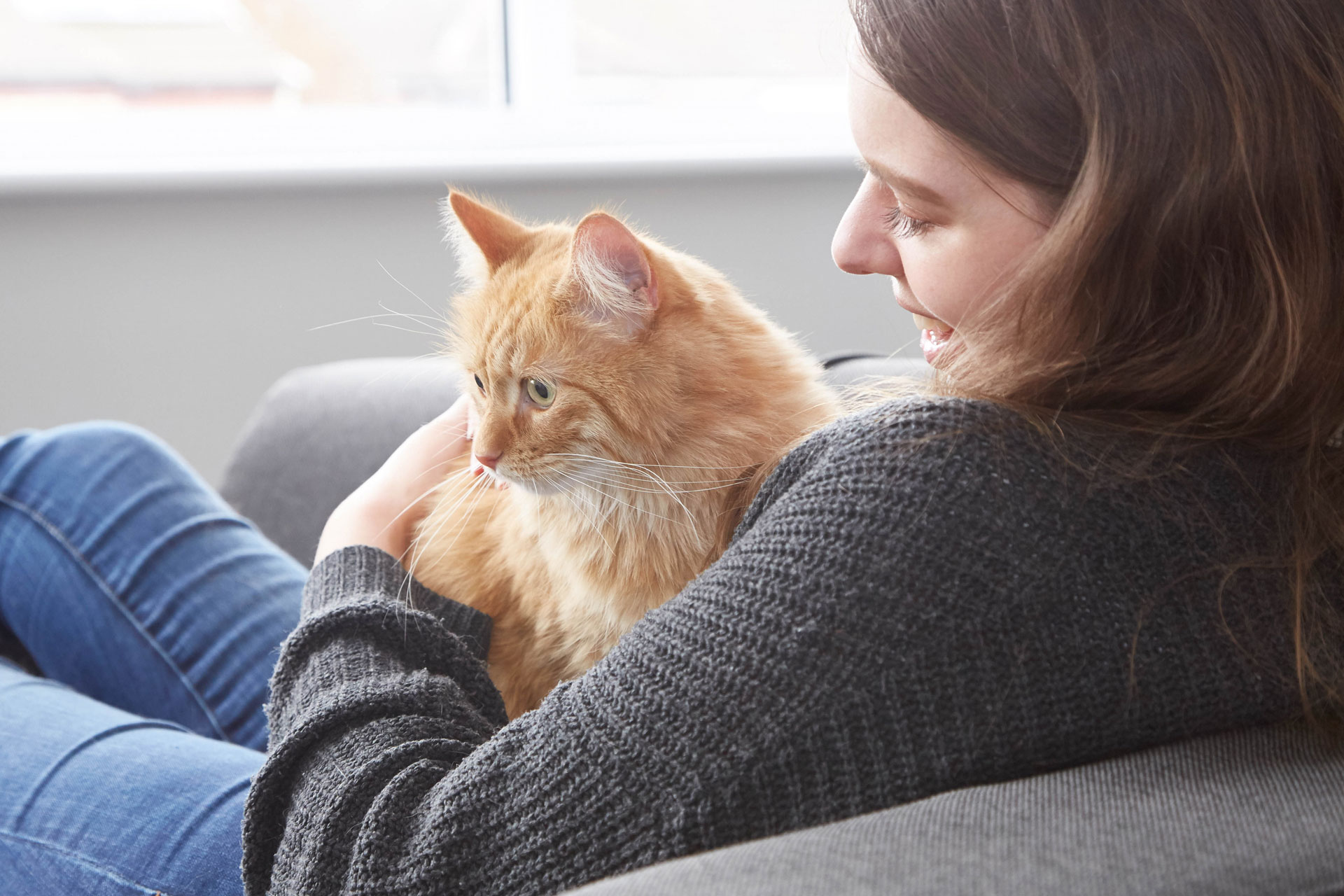 Owner sitting with cat
